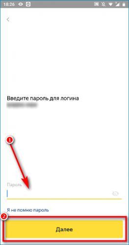 forma-dlja-vvoda-parolja-v-prilozhenii.png